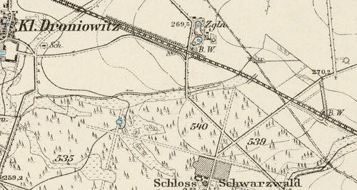 szwarcwald2019rfrt